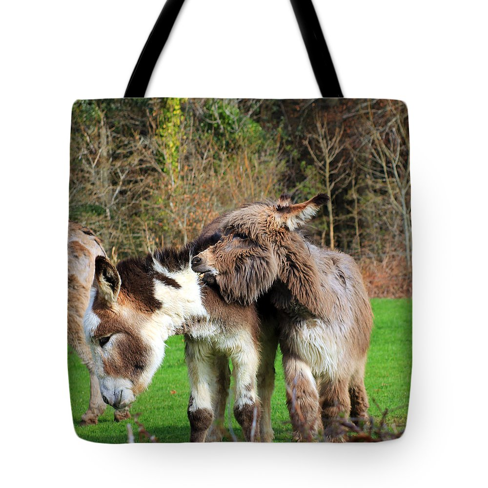 Biting Donkey Tote Bag featuring the photograph Ouch by Jennifer Robin
