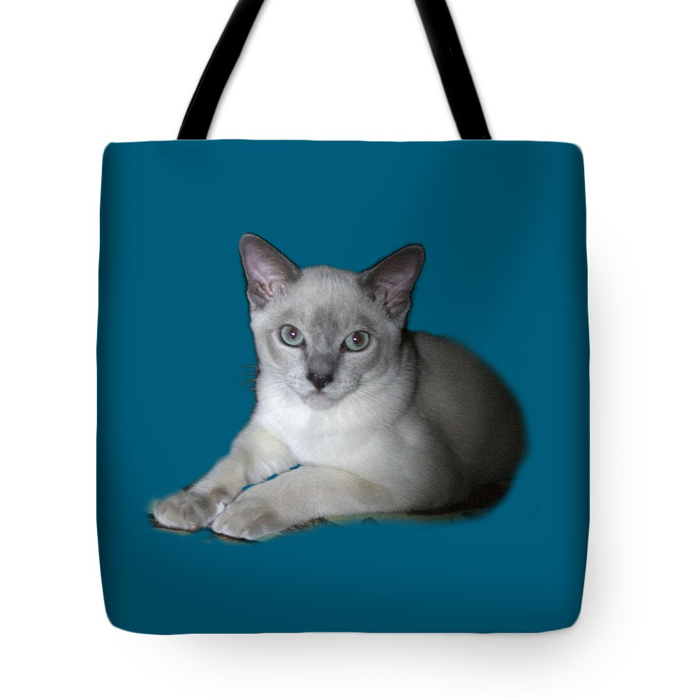 Nature Tote Bag featuring the photograph Our Little Angel by Linda Phelps