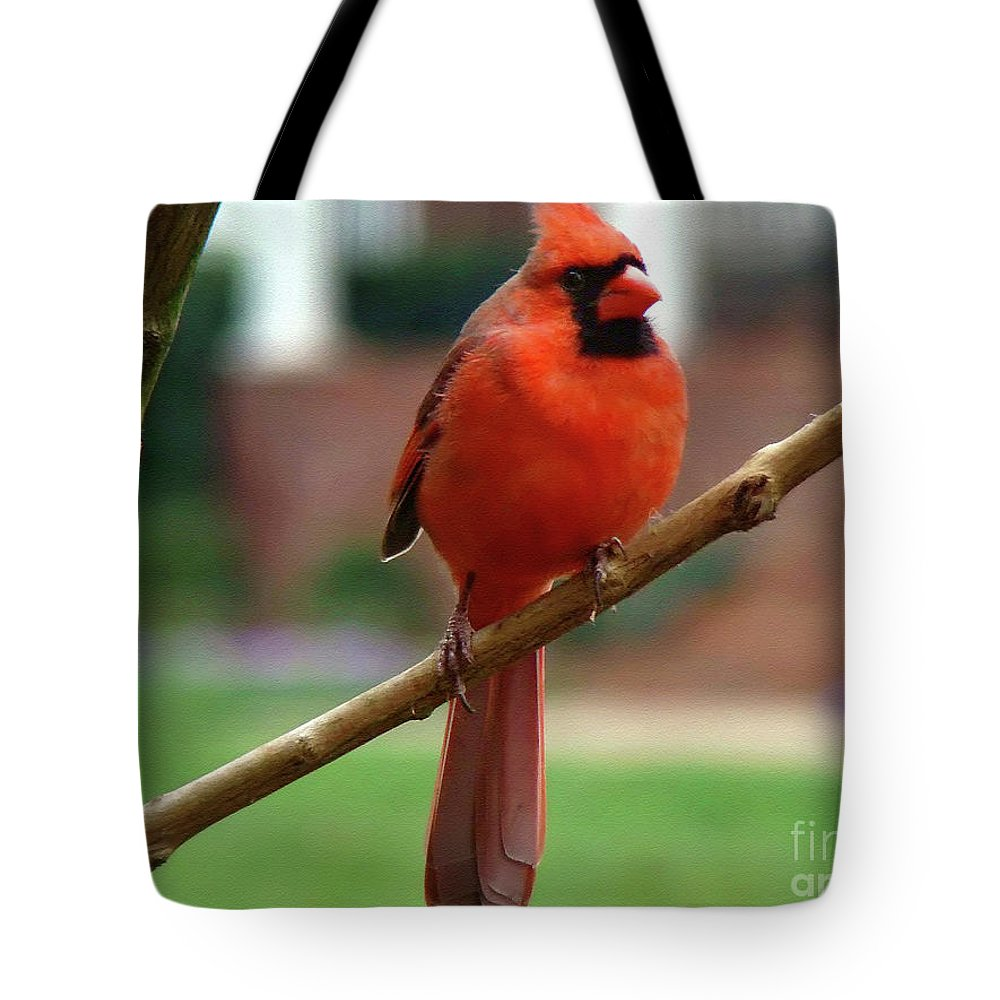 Bird Tote Bag featuring the photograph Out On A Limb by Sue Melvin