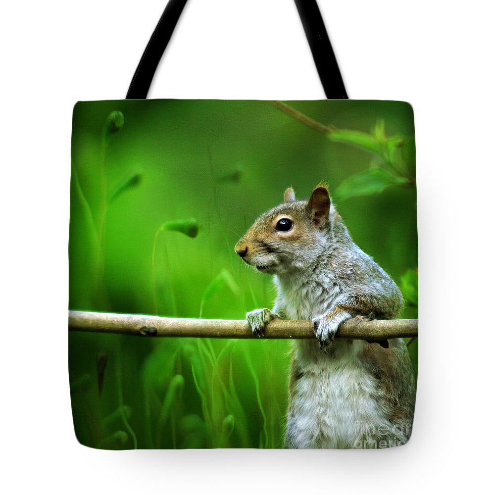 Squirrel Tote Bag featuring the photograph Over The Fence Full Color by Angel Ciesniarska