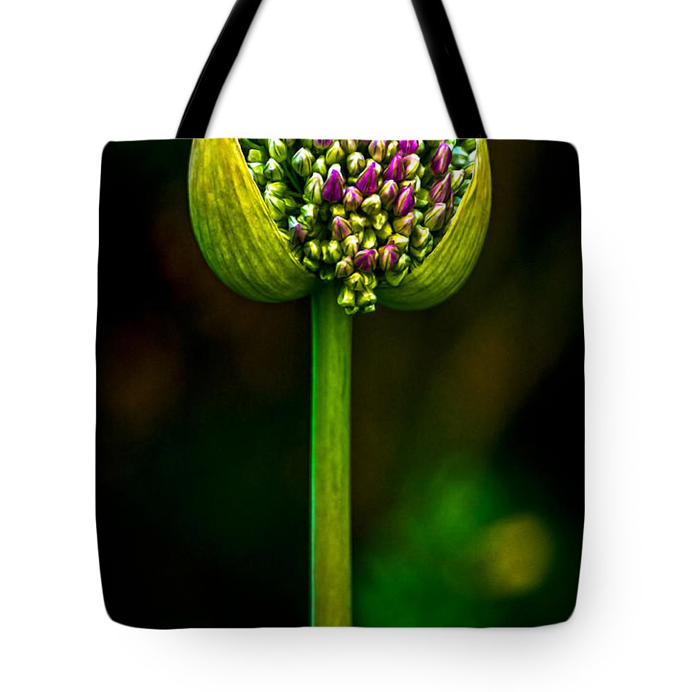 Flower Tote Bag featuring the photograph Overcrowding by James Aiken