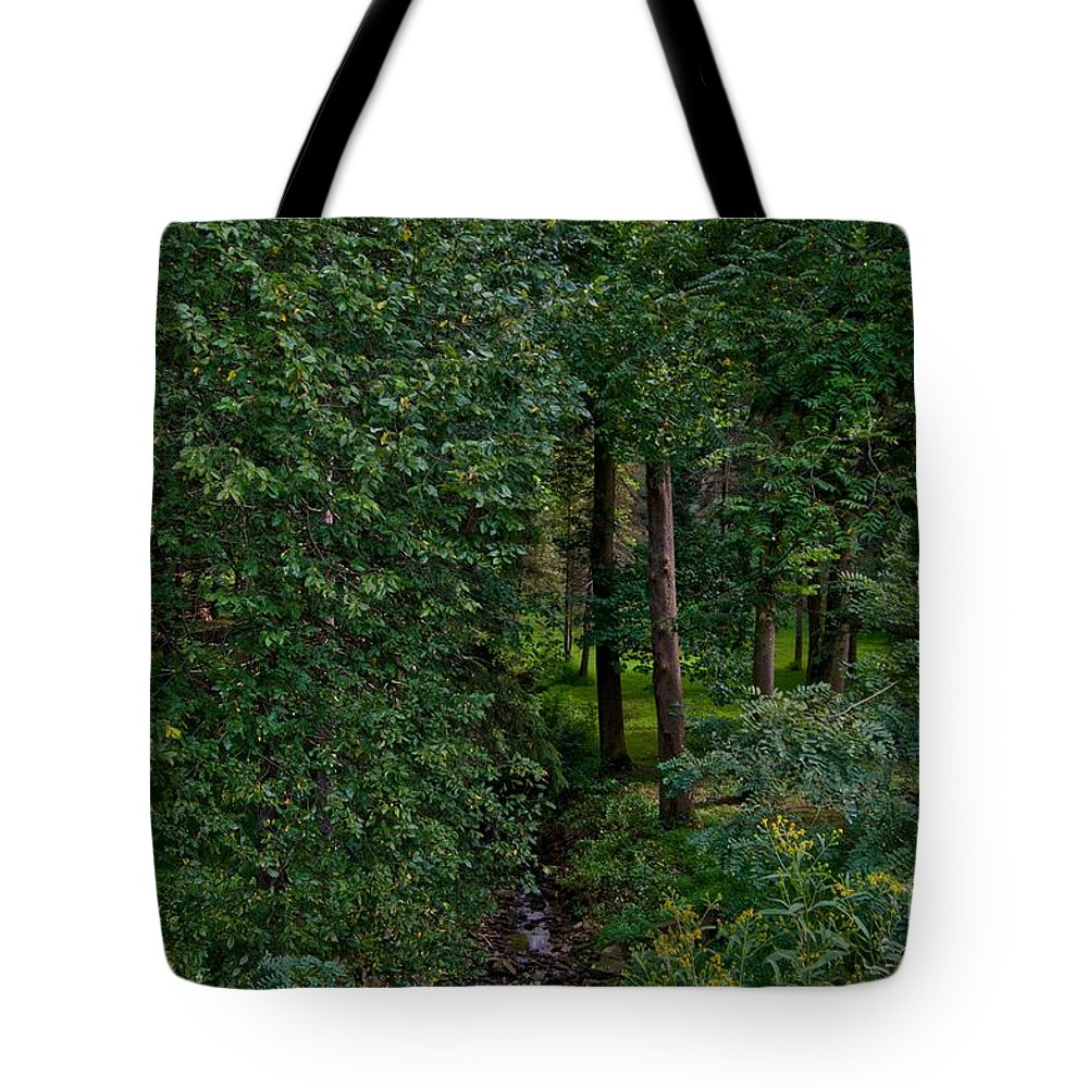 Brook Tote Bag featuring the photograph Overgrown Brook by Jake Donaldson