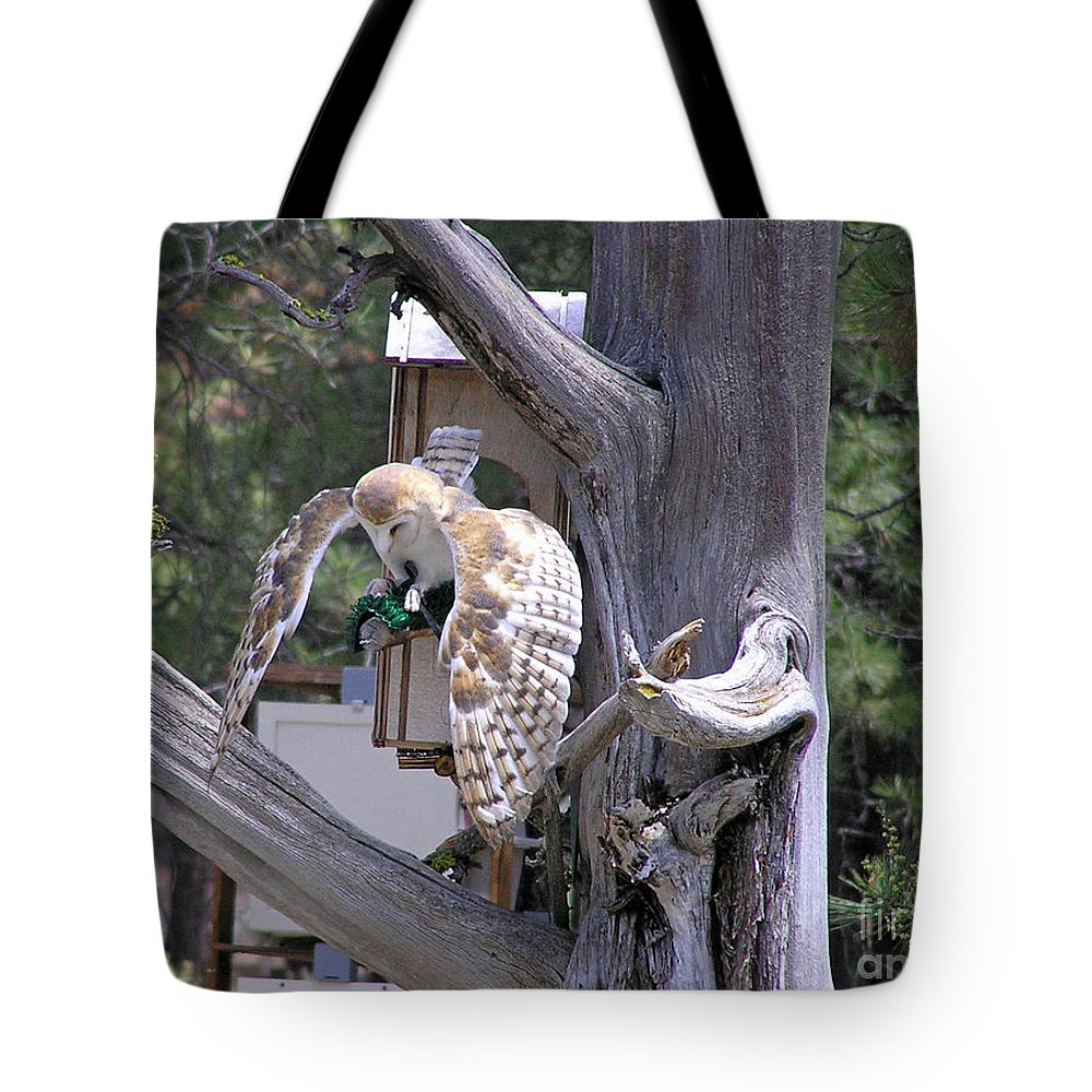 Tote Bag featuring the photograph Owl Takeoff by Louise Magno