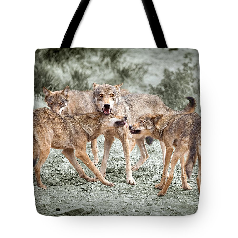 Wolf Tote Bag featuring the photograph Pack Dispute by Mal Bray