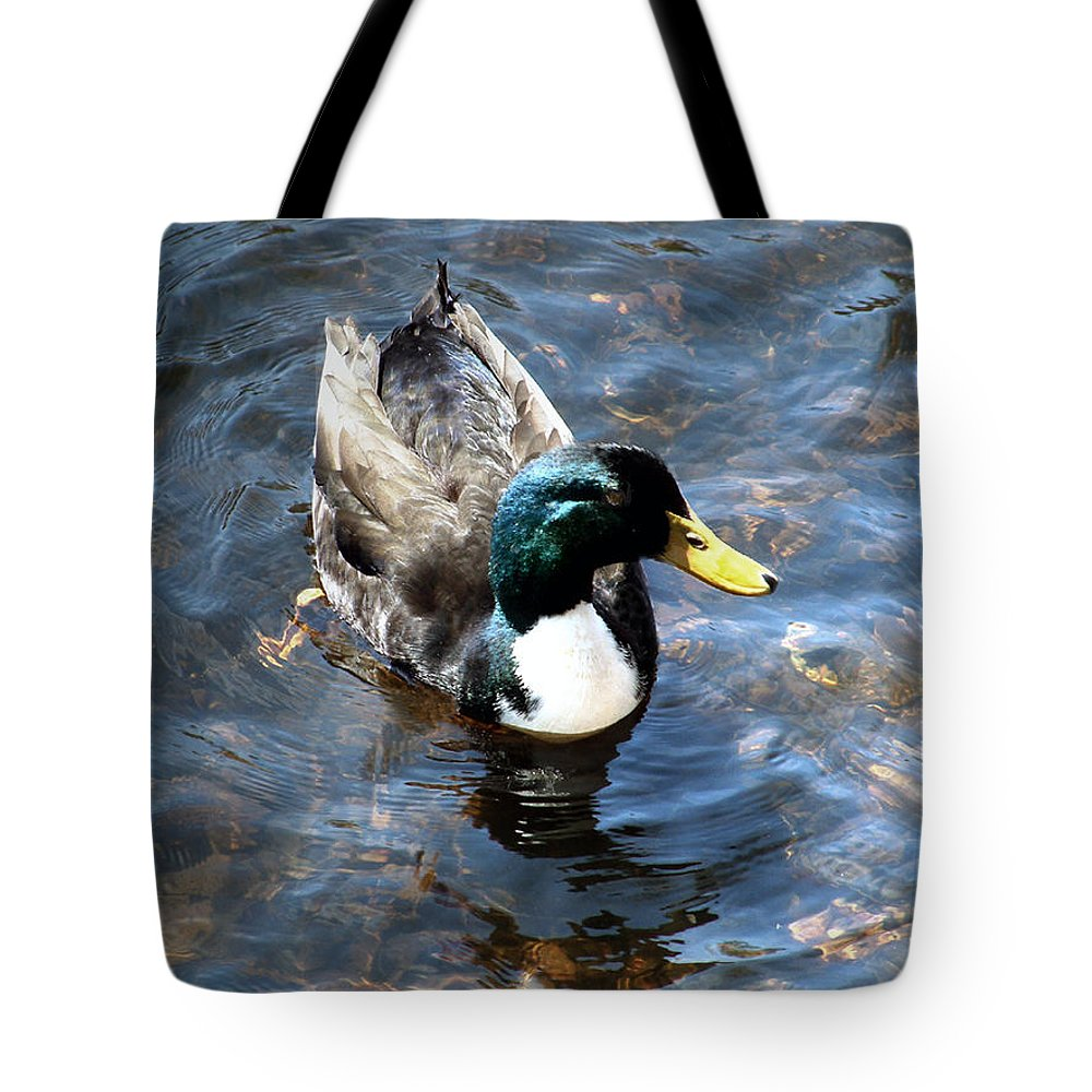 Drake Tote Bag featuring the photograph Paddling Peacefully by RC DeWinter