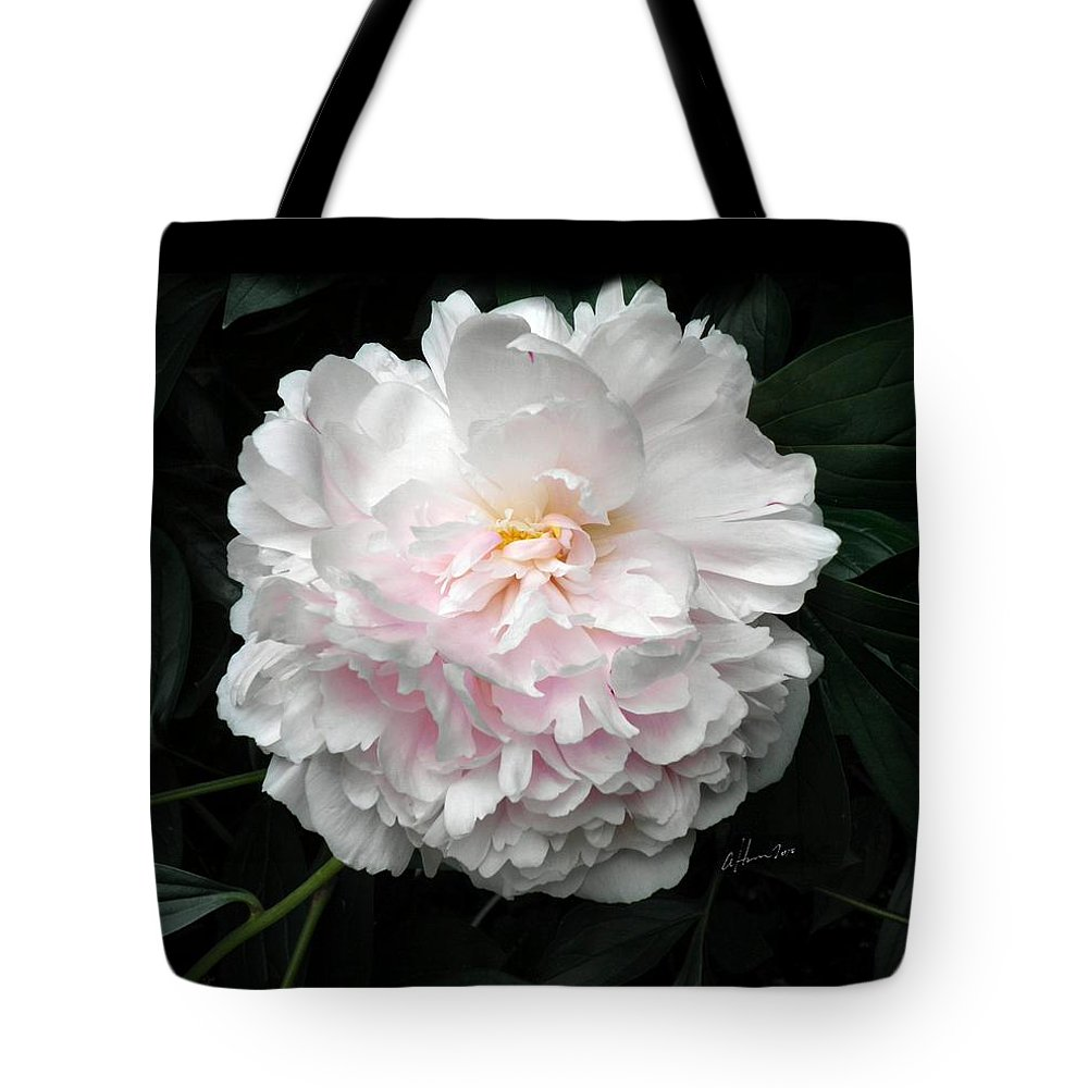 Peony Tote Bag featuring the photograph Paeon by T Cook