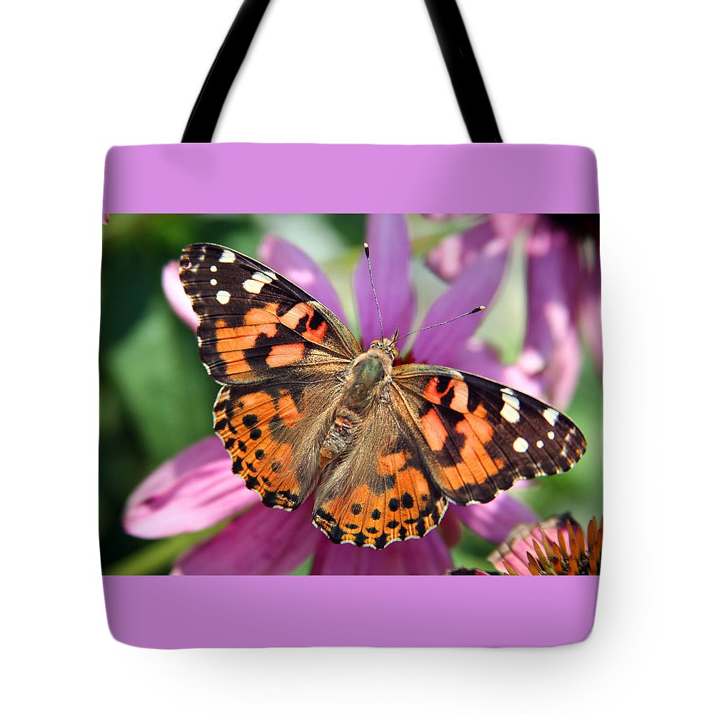Painted Lady Tote Bag featuring the photograph Painted Lady Butterfly by Margie Wildblood