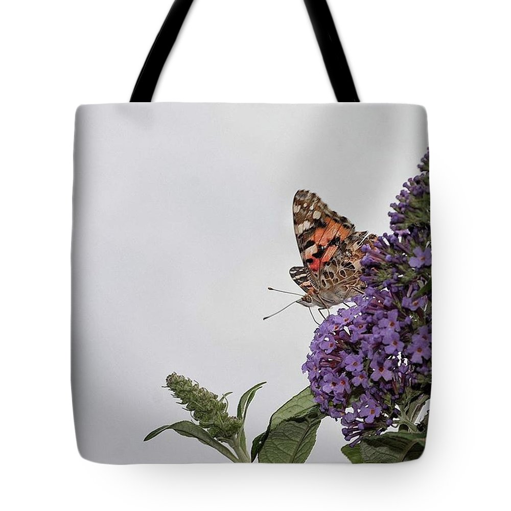 Insectsofinstagram Tote Bag featuring the photograph Painted Lady (vanessa Cardui) by John Edwards