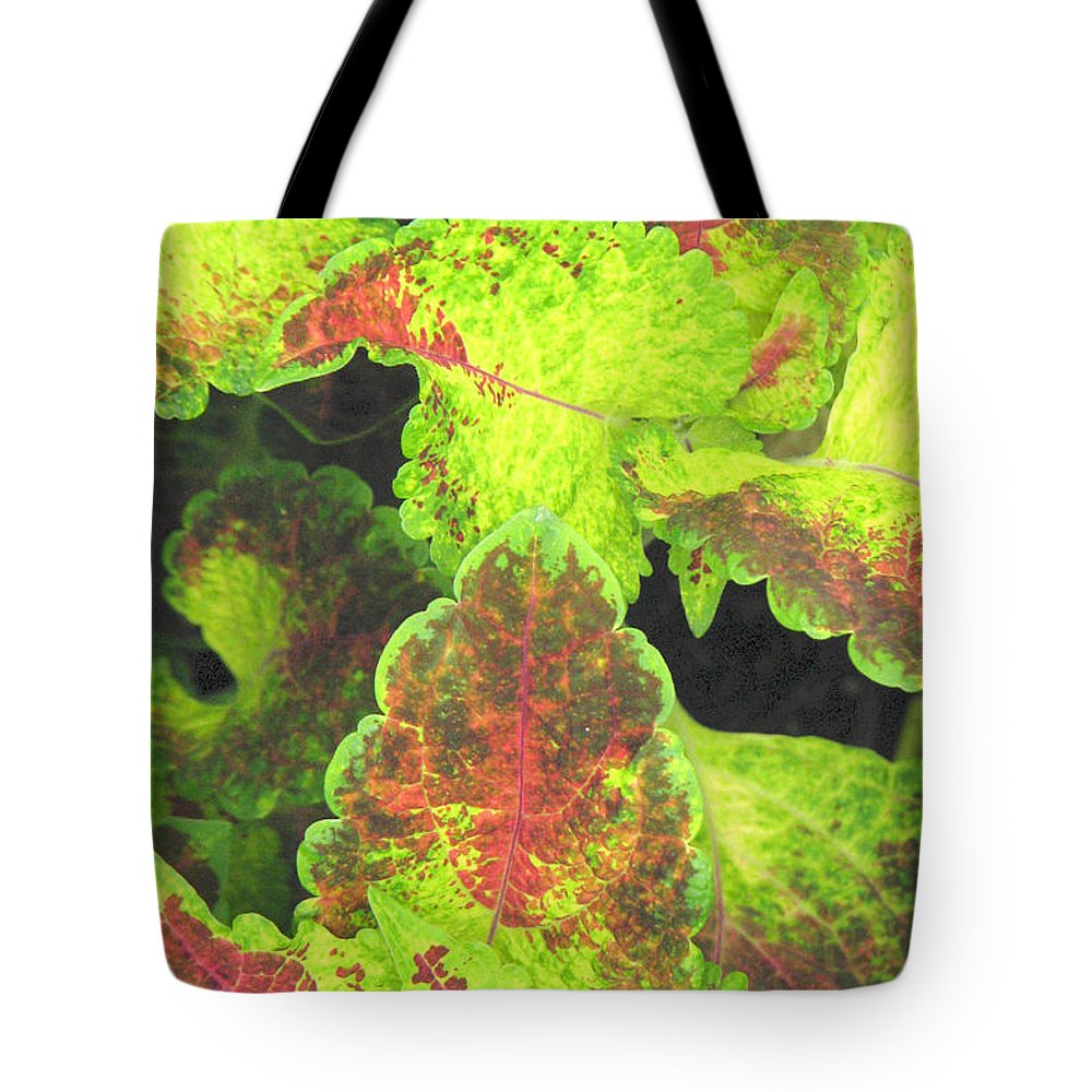 Leaves Tote Bag featuring the photograph Painted Leaves by Frank Townsley