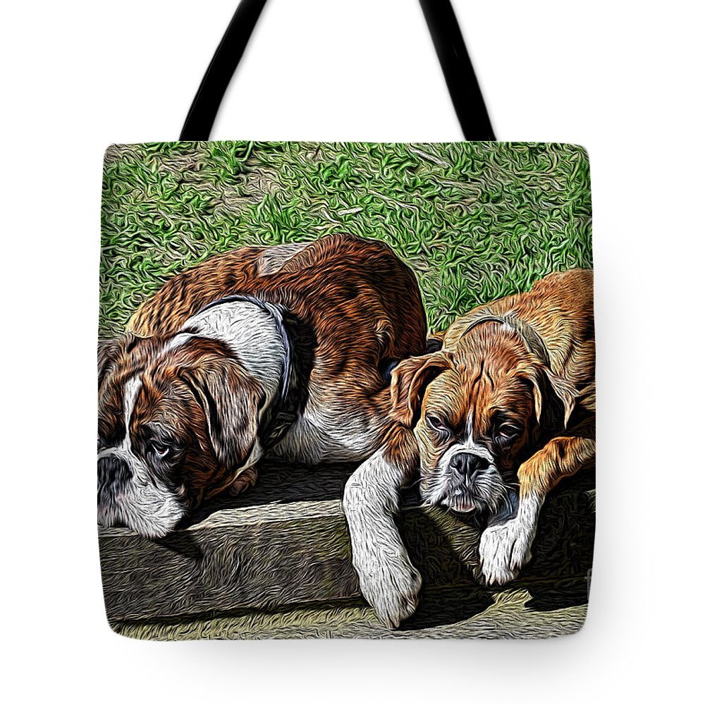 Boxers Tote Bag featuring the photograph Pair Of Boxers by Chris Thaxter