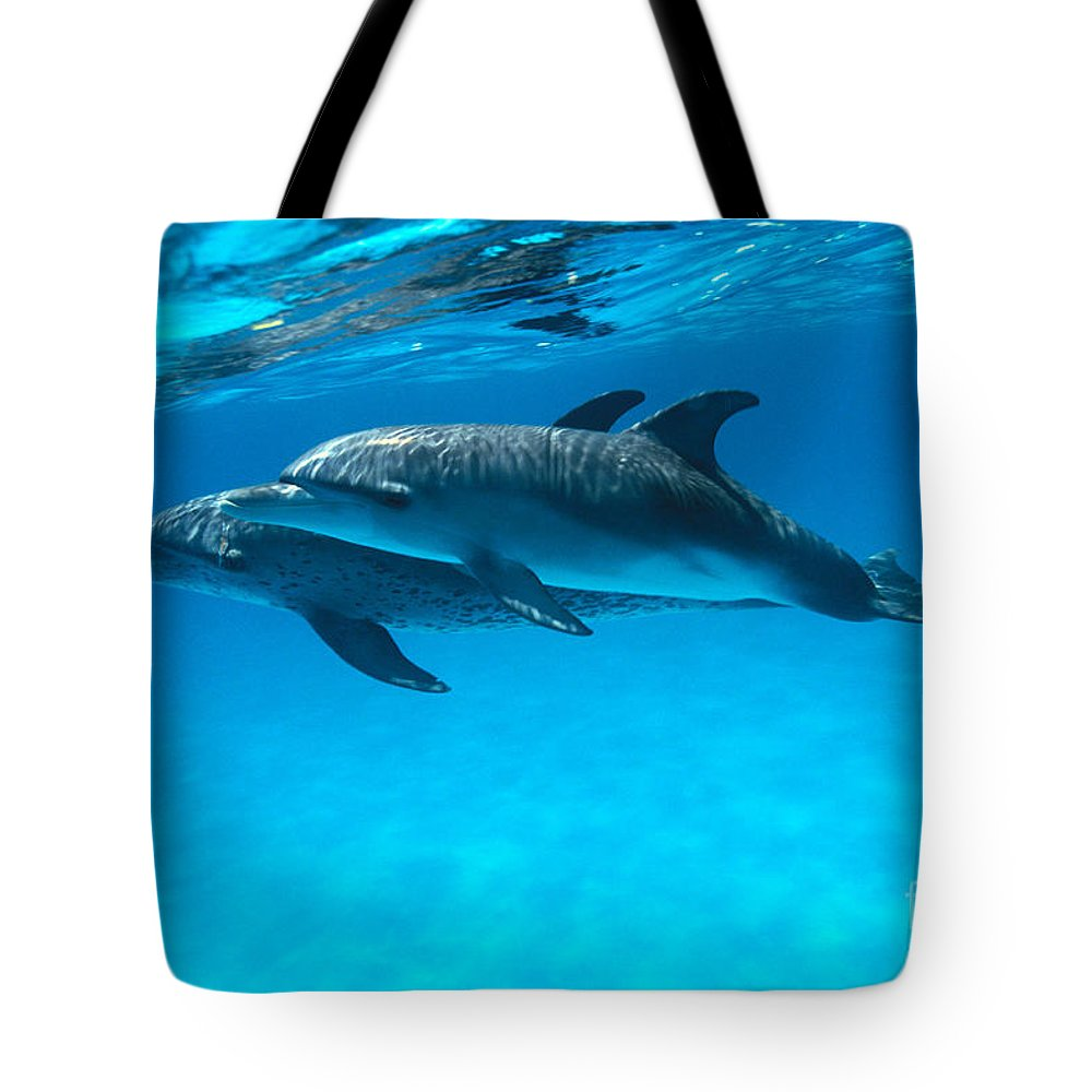 Animal Art Tote Bag featuring the photograph Pair Of Spotted Dolphins by Ed Robinson - Printscapes