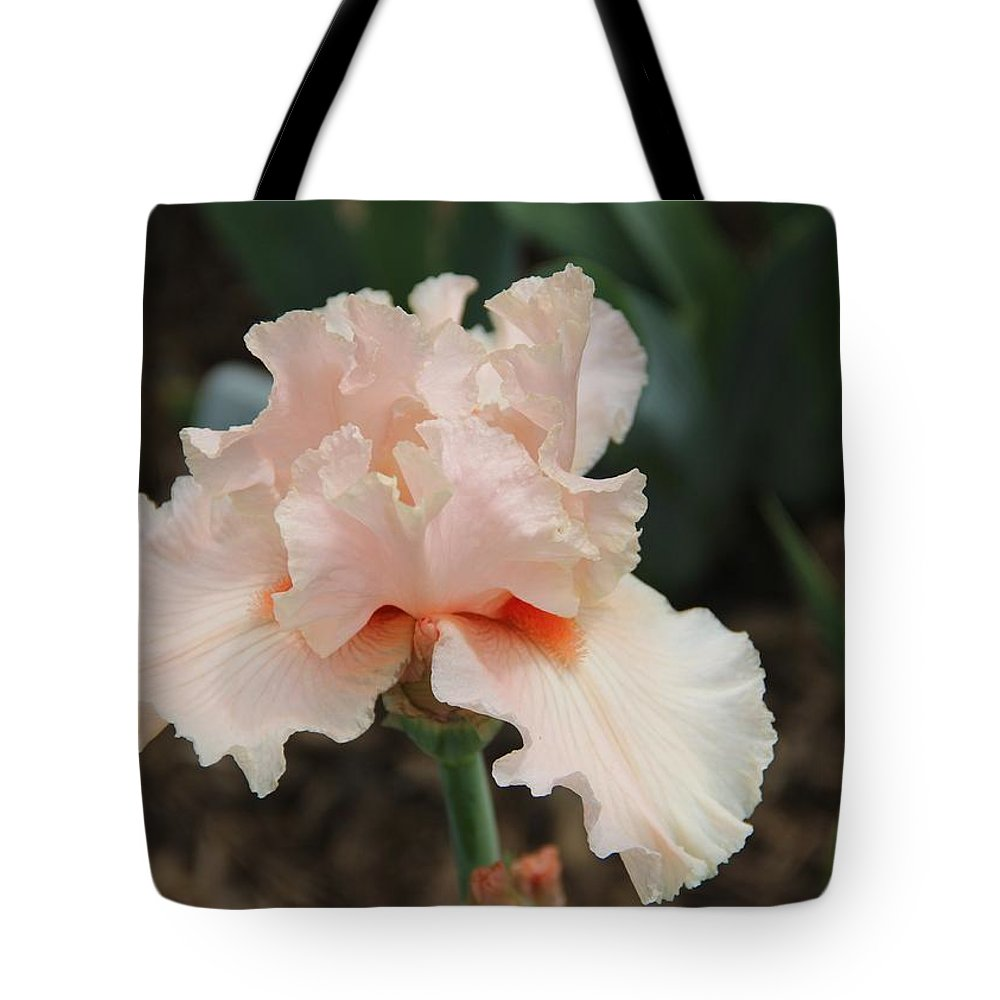 Iris Tote Bag featuring the photograph Pale Iris by Christopher Jay