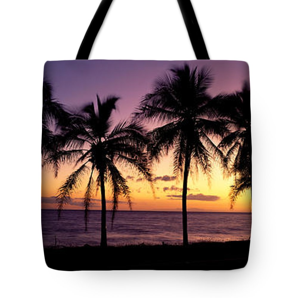 B1538 Tote Bag featuring the photograph Palm Horizons by Bill Schildge - Printscapes