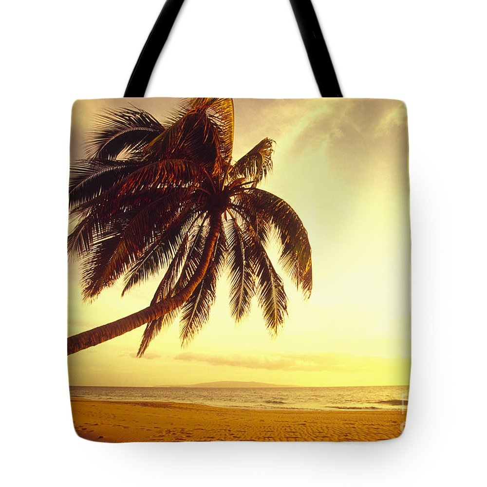 66-csm0125 Tote Bag featuring the photograph Palm Over The Beach by Ron Dahlquist - Printscapes