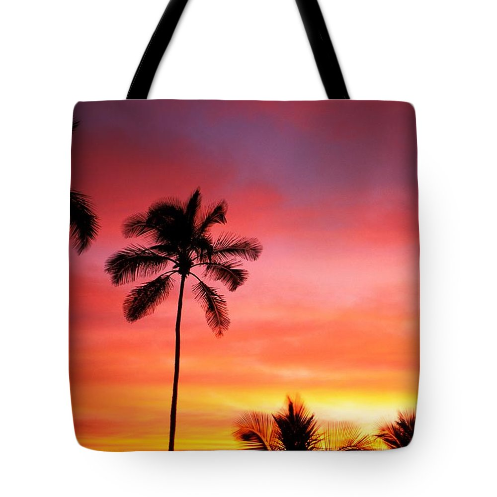 Air Art Tote Bag featuring the photograph Palm Silhouettes by Dana Edmunds - Printscapes