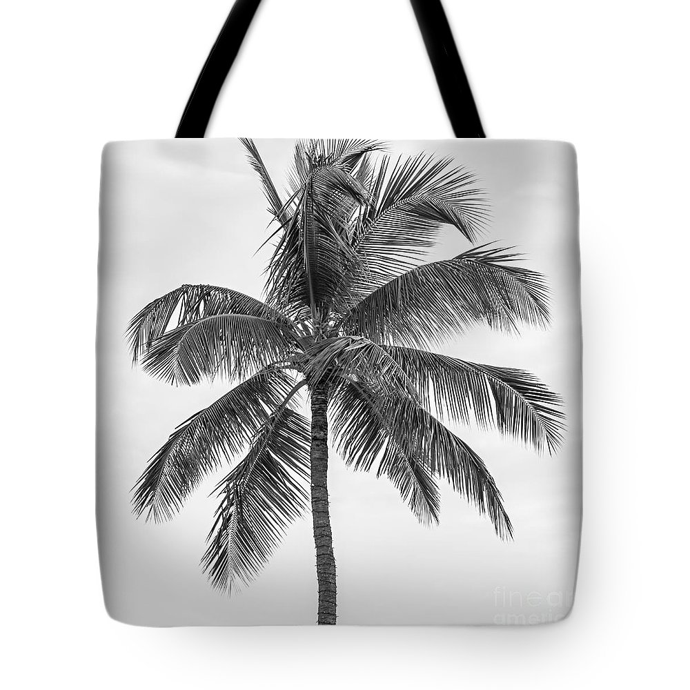 Palm Tote Bag featuring the photograph Palm tree in black and white by Elena Elisseeva