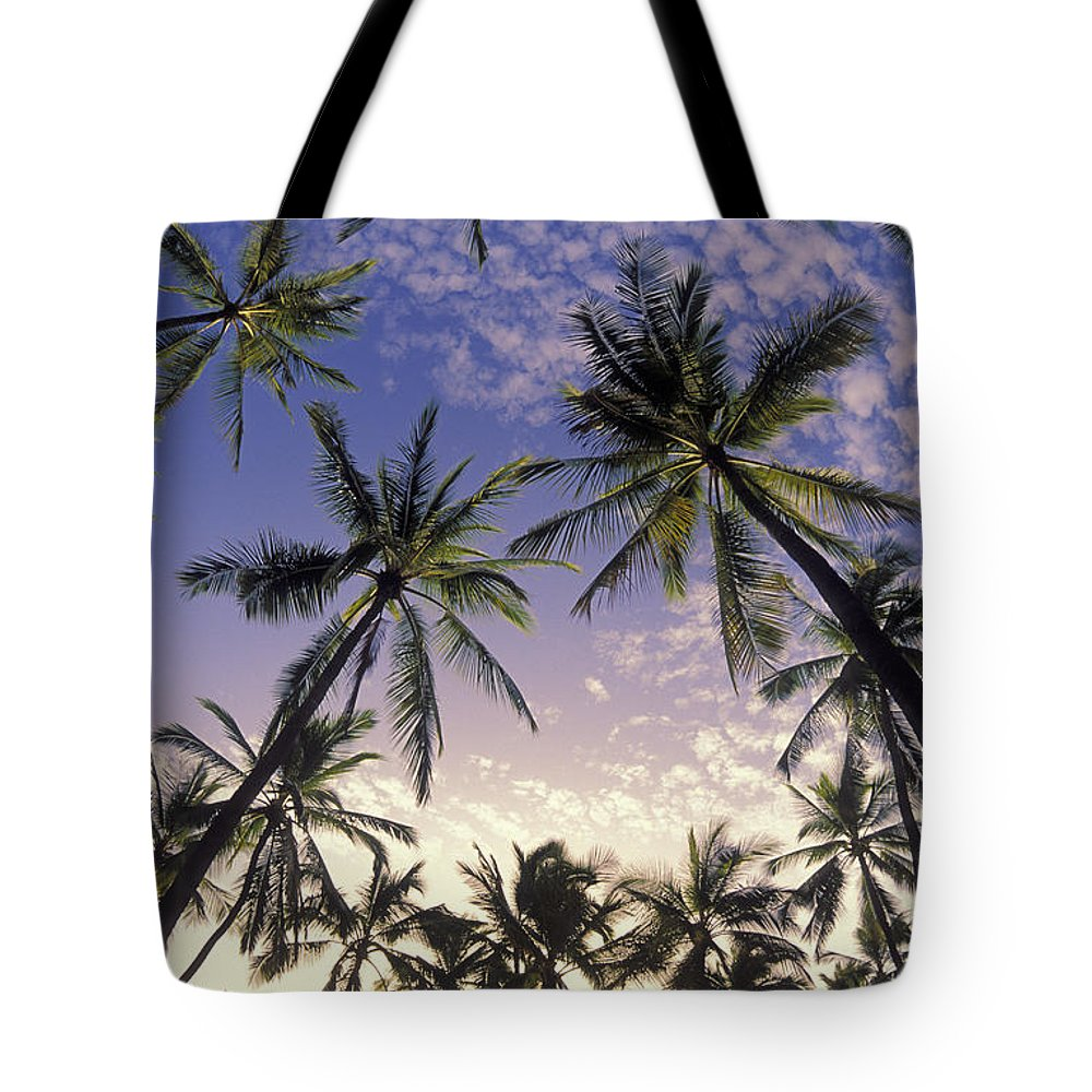 Afternoon Tote Bag featuring the photograph Palm Tree Grove by Greg Vaughn - Printscapes