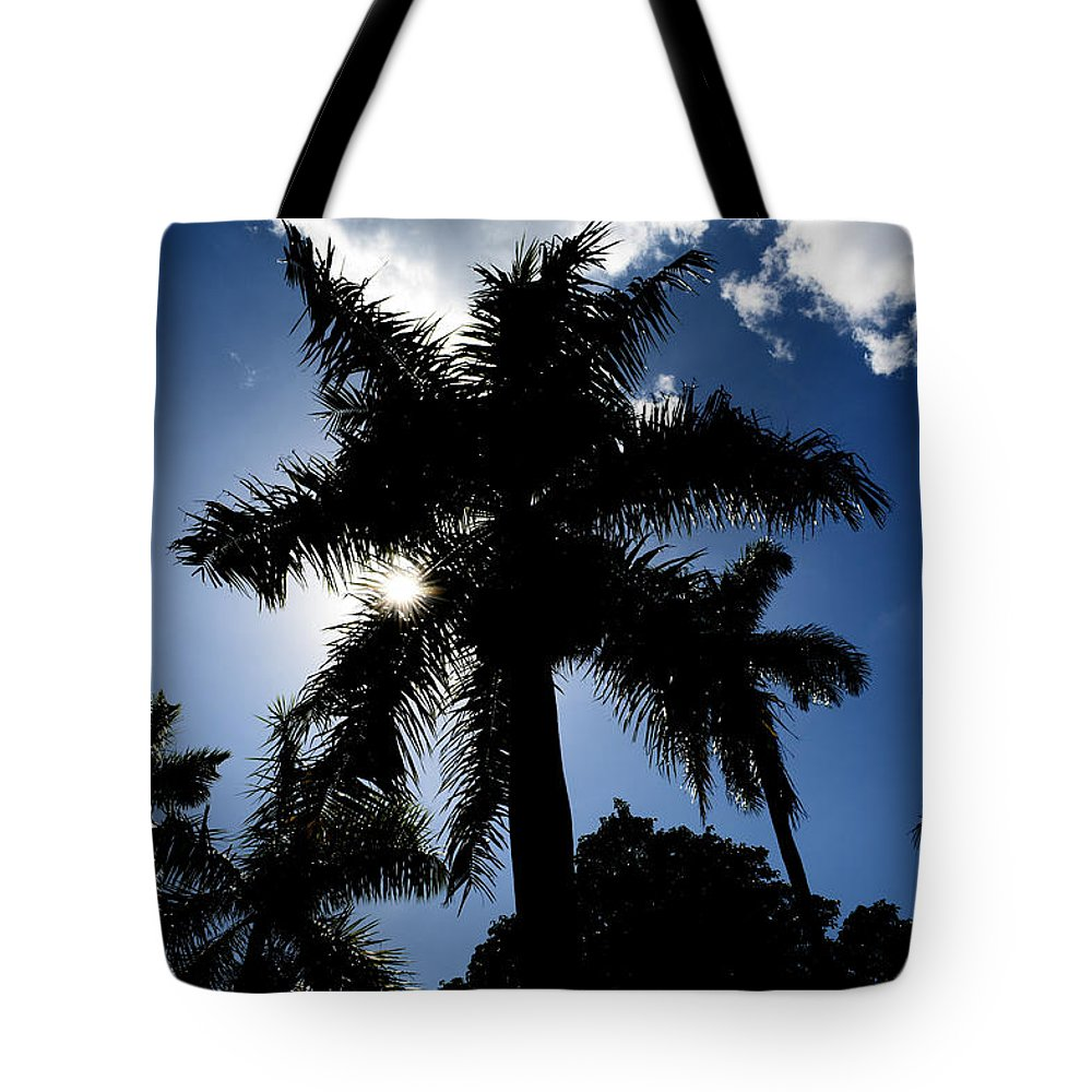 Palm-trees Tote Bag featuring the photograph Palm Trees In Silhouette by Reva Steenbergen
