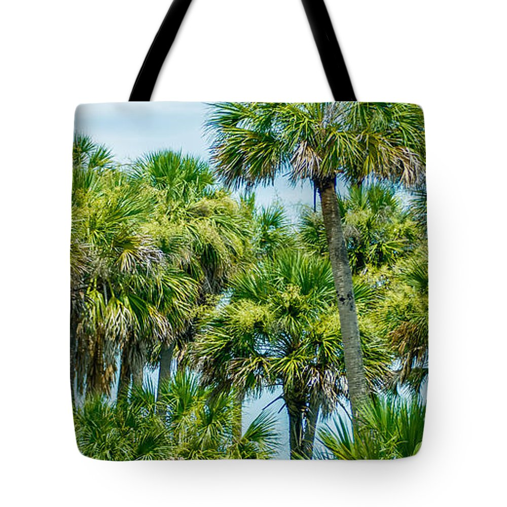 Palmetto Tote Bag featuring the photograph Palmetto Palm Trees In Sub Tropical Climate Of Usa by Alex Grichenko
