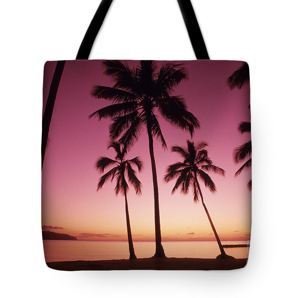 Beach Tote Bag featuring the photograph Palms Against Pink Sunset by Carl Shaneff - Printscapes