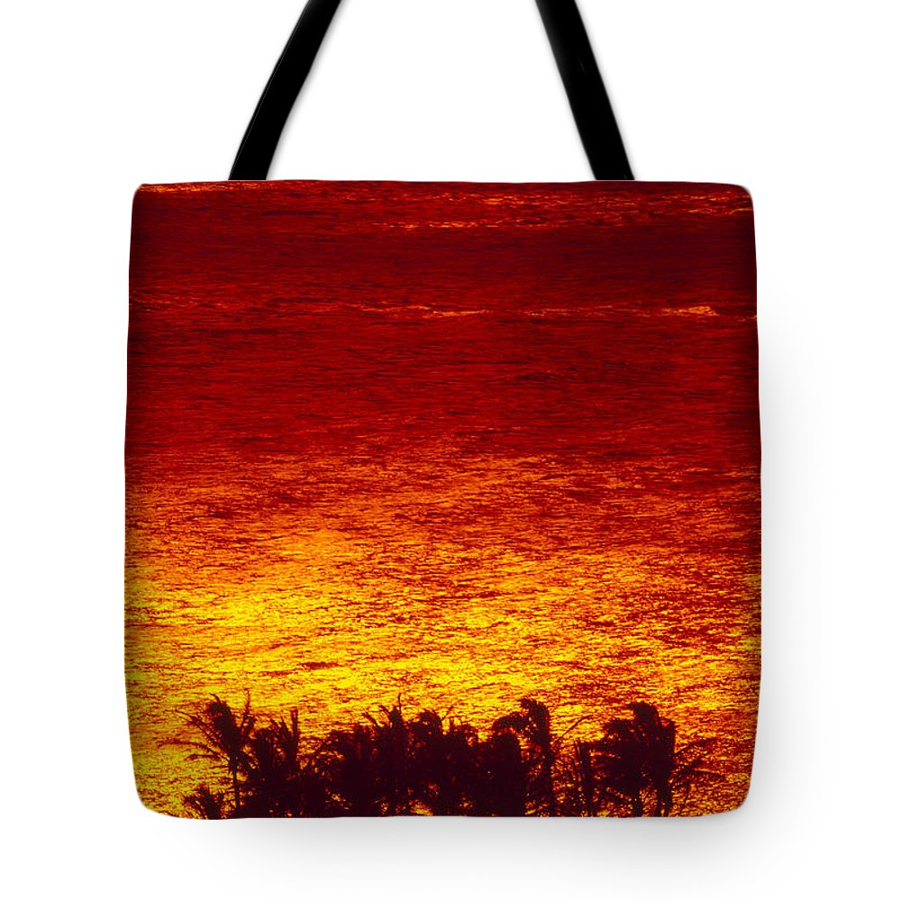 Bright Tote Bag featuring the photograph Palms And Reflections by Ron Dahlquist - Printscapes
