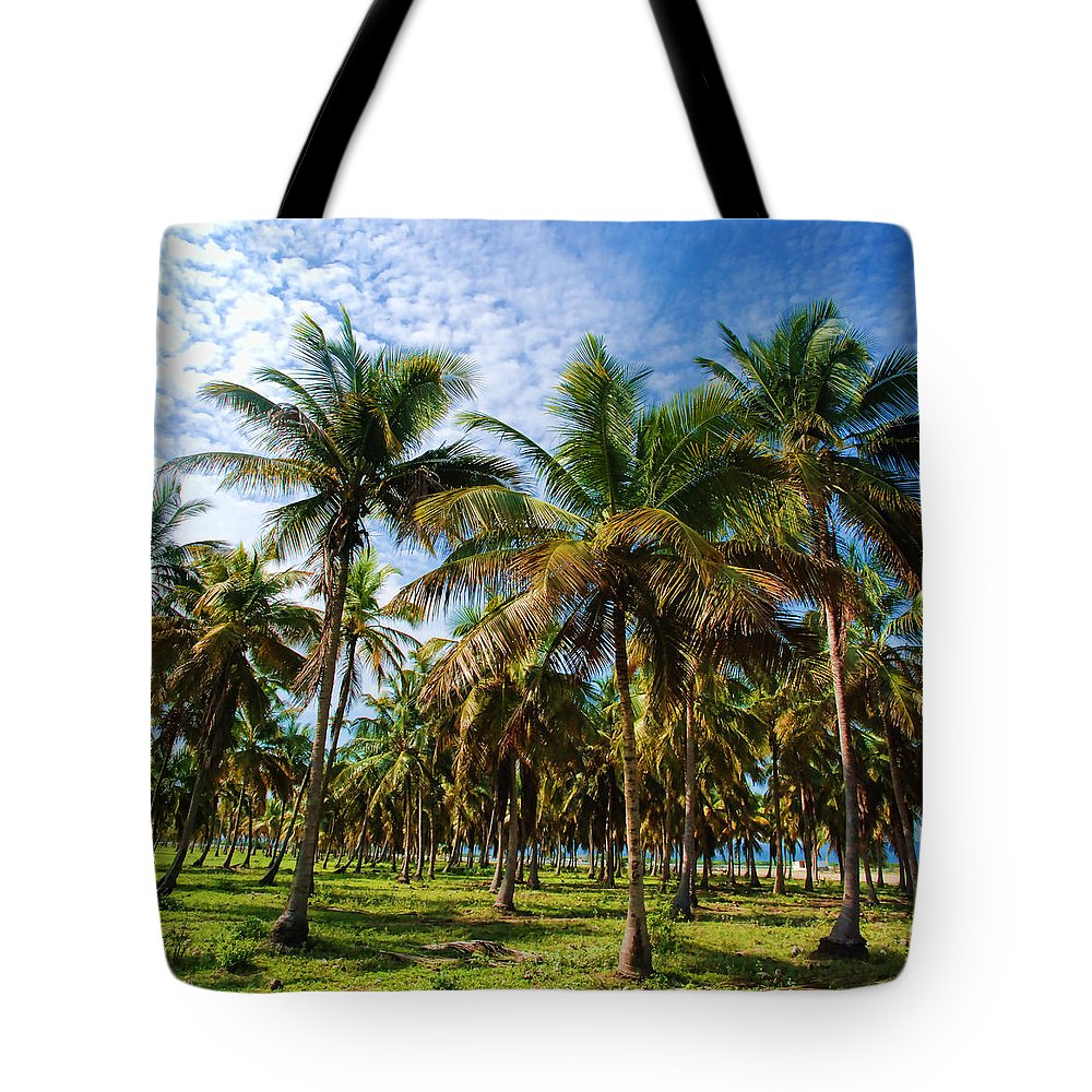 Palms Tote Bag featuring the photograph Palms And Sky by Galeria Trompiz