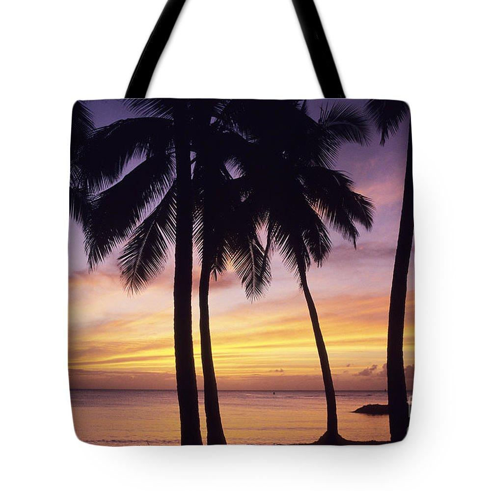 Beach Tote Bag featuring the photograph Palms And Sunset Sky by Carl Shaneff - Printscapes