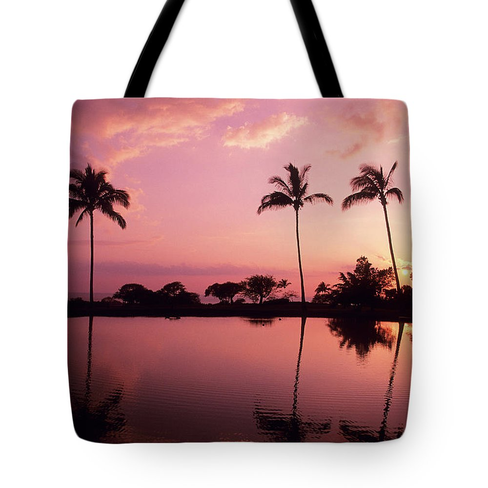 Beach Tote Bag featuring the photograph Palms At Still Lagoon by Carl Shaneff - Printscapes