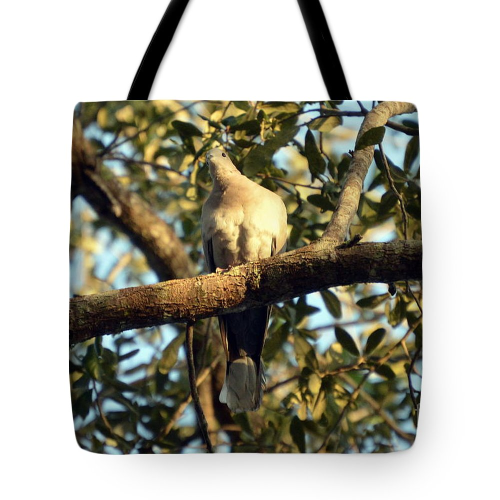 Tote Bag featuring the photograph Paloma II by Lenin Caraballo