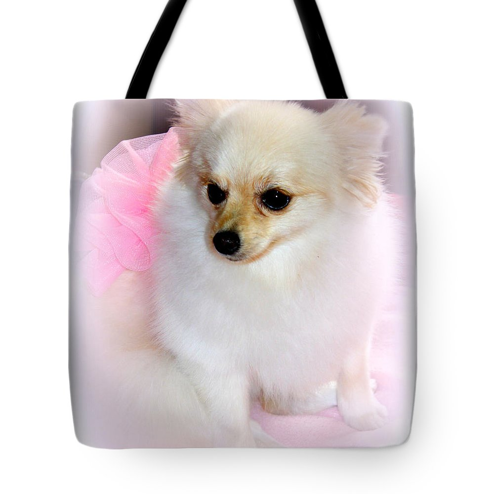 Pomeranian Tote Bag featuring the photograph Pampered Pomeranian by Kathy White