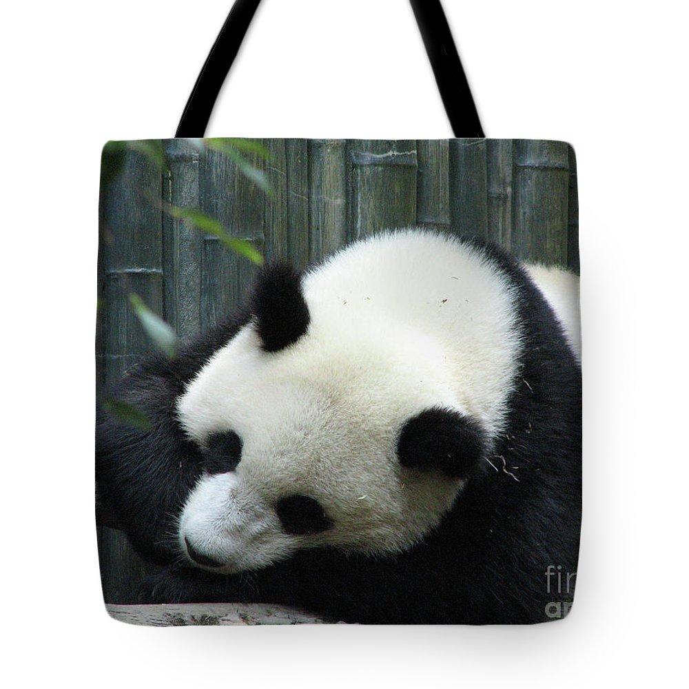Panda Tote Bag featuring the photograph Panda Bear Sleeping On A Fallen Tree Branch by DejaVu Designs