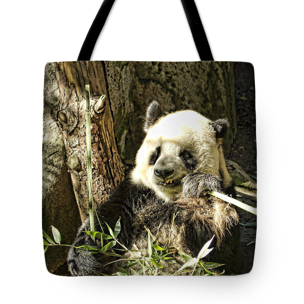 Panda Bear Tote Bag featuring the photograph Panda Breakfast by Sissy Schneiderman