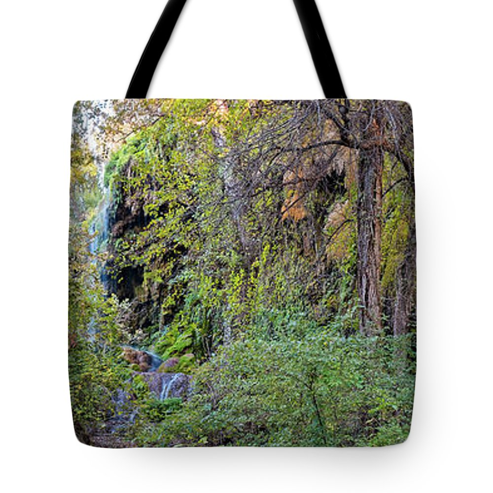 Central Tote Bag featuring the photograph Panorama Of Gorman Falls At Colorado Bend State Park - Lampasas Texas Hill Country by Silvio Ligutti