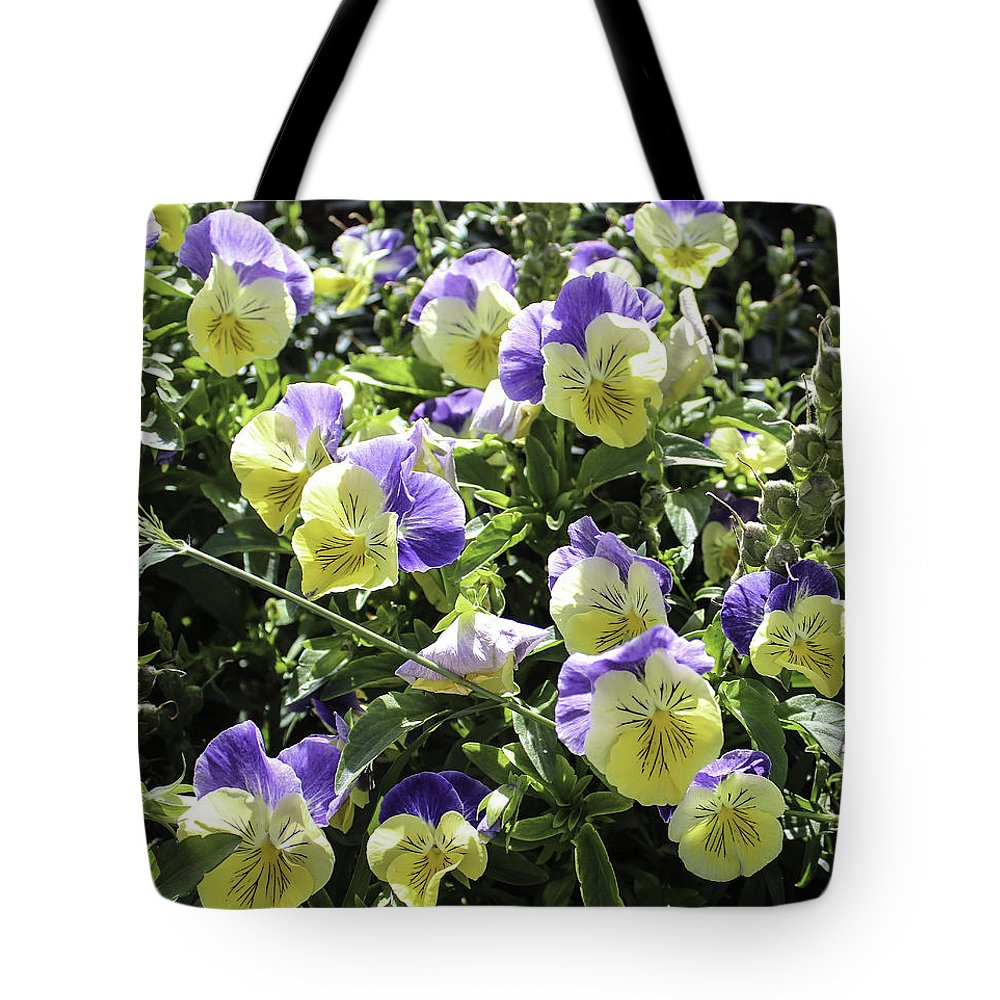 Pansies Tote Bag featuring the photograph Pansies by Lorraine Baum