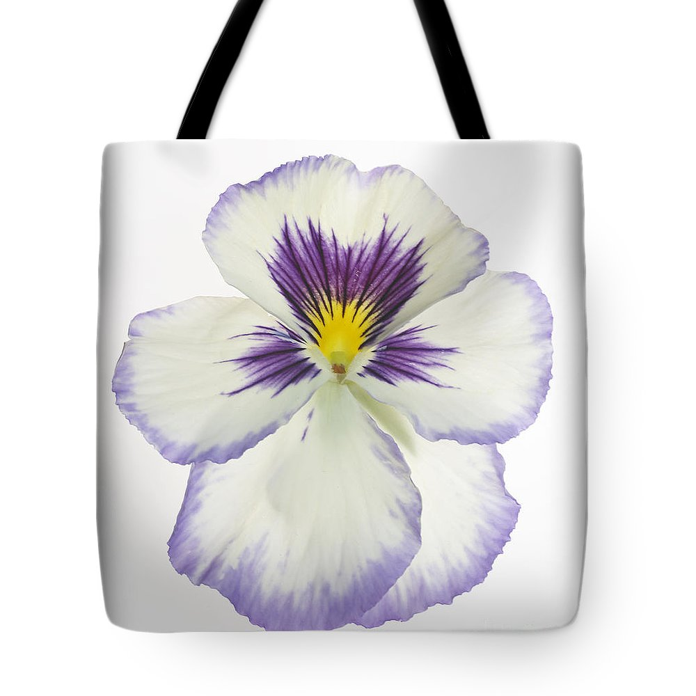Pansy Genus Viola Tote Bag featuring the photograph Pansy 2 by Tony Cordoza