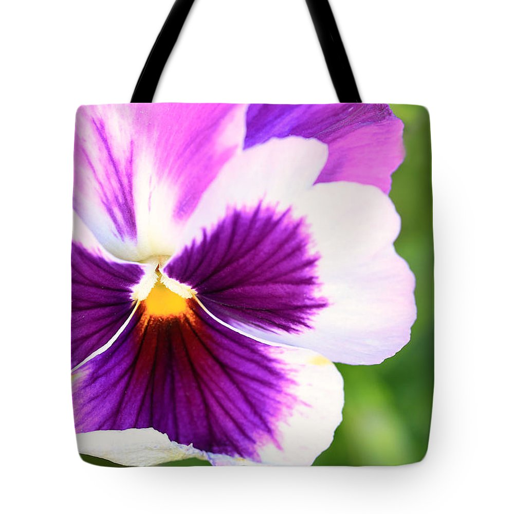 Landscape Tote Bag featuring the photograph Pansy Wave by Janice Bajek