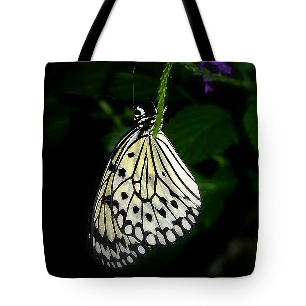 Butterfly Tote Bag featuring the photograph Paperwhite Butterfly by Teresa Stallings