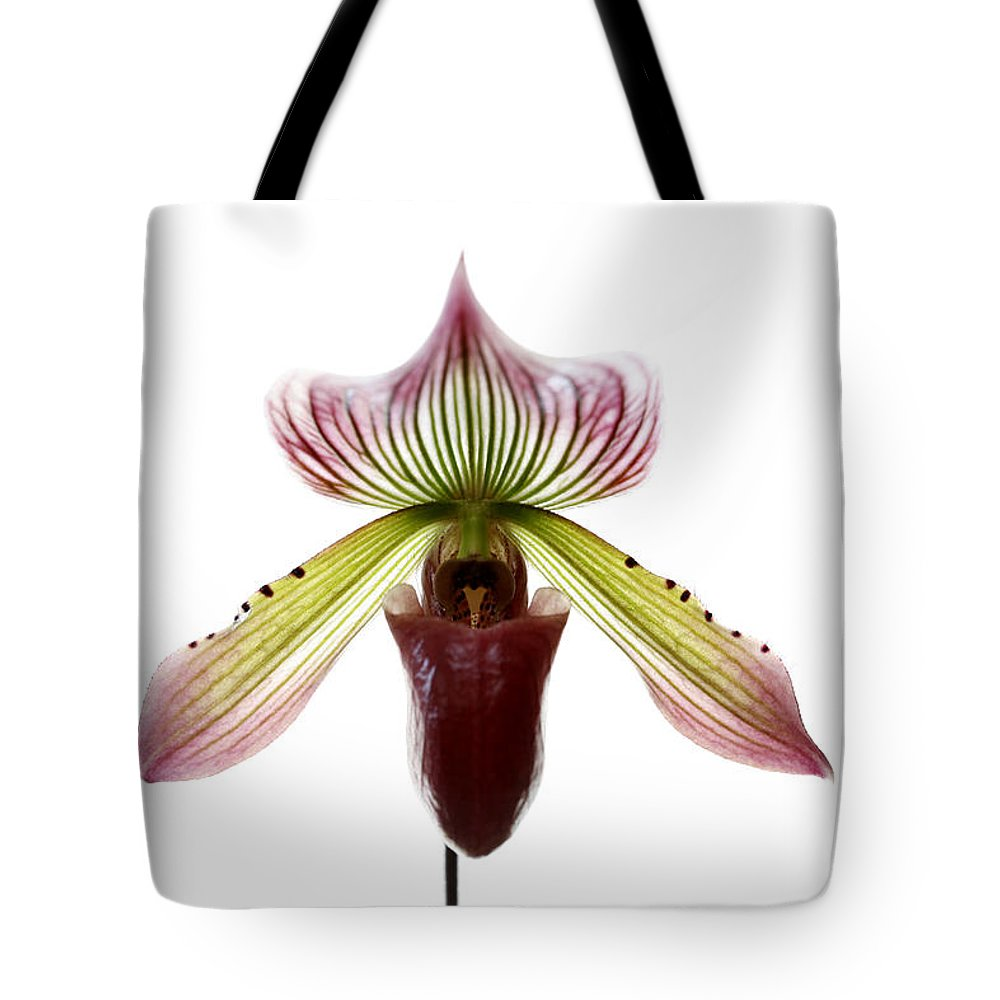 Orchid Tote Bag featuring the photograph Paphiopedilum Lawrenceanum by Marilyn Hunt
