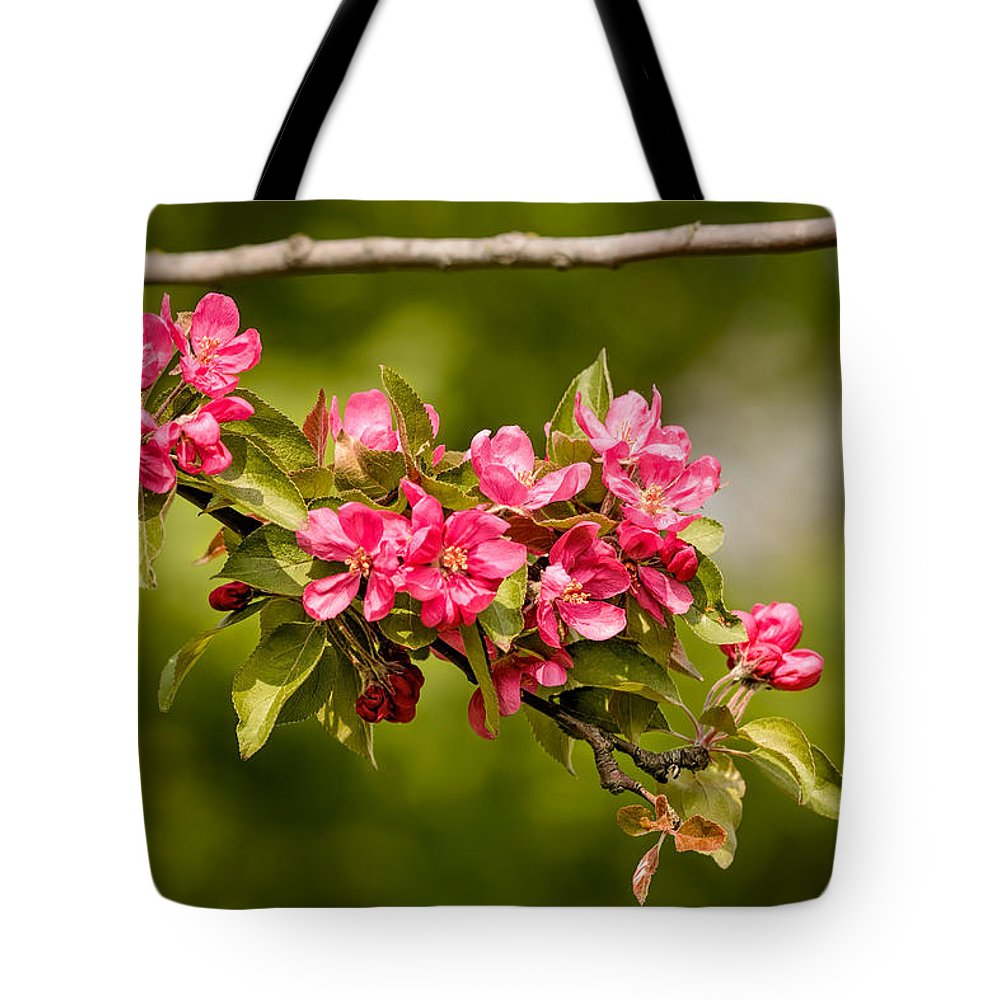 Apple Tote Bag featuring the photograph Paradise Apples Flowers by Alain De Maximy