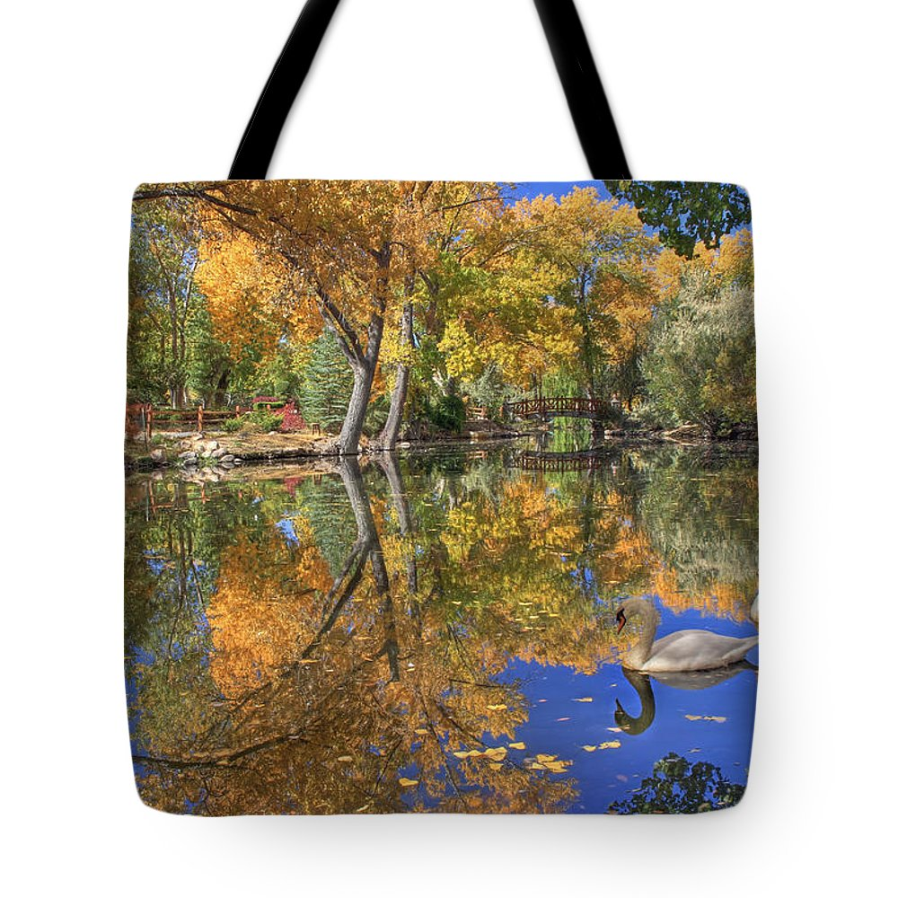 Swan Tote Bag featuring the photograph Paradise by Donna Kennedy