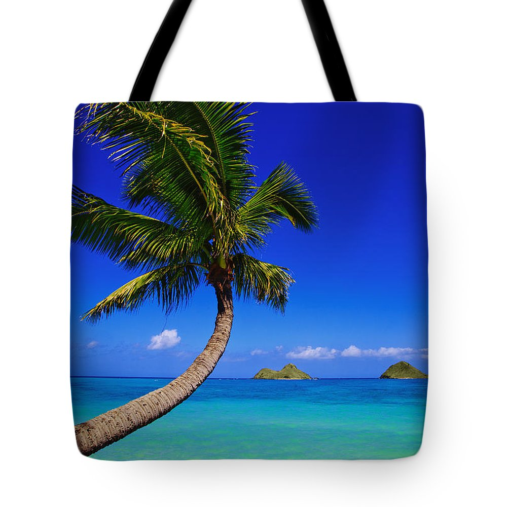 Afternoon Tote Bag featuring the photograph Paradise Palm Over Lanikai by Tomas del Amo - Printscapes