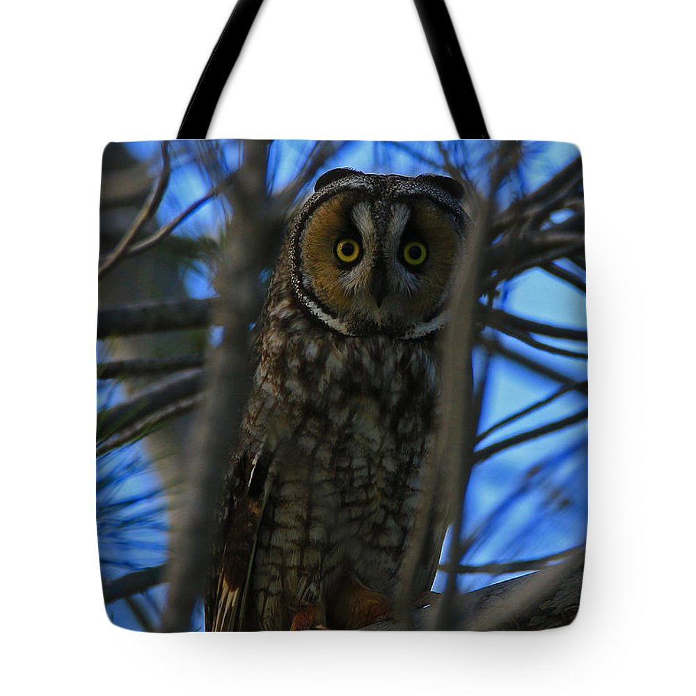 Long Tote Bag featuring the photograph Parallel Leanings - A Hooter Study by Craig Corwin