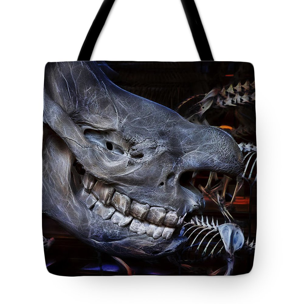 Evie Tote Bag featuring the photograph Paris Gallery Of Paleontology 2 by Evie Carrier