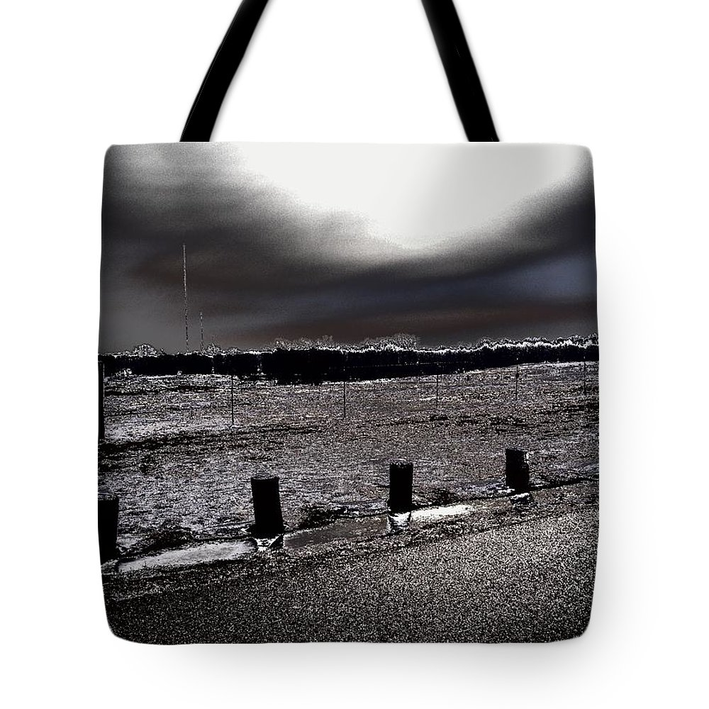Outdoor Tote Bag featuring the photograph Park In The Moonlight by Charleen Treasures