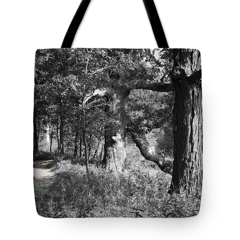 Nature Tote Bag featuring the photograph Parkland Trail by Dylan Punke