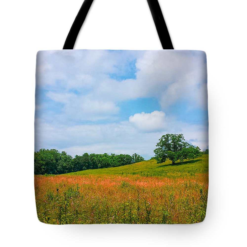 Lone Tree Tote Bag featuring the photograph Parkway Beauty by Denesia Christine Huttula