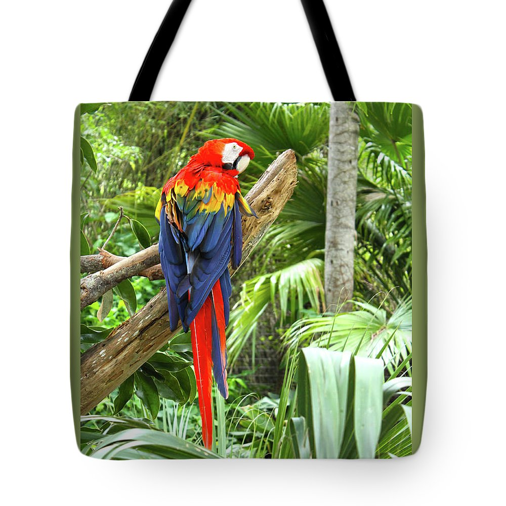 Bird Tote Bag featuring the photograph Parrot In Tropical Setting by Sharon Minish