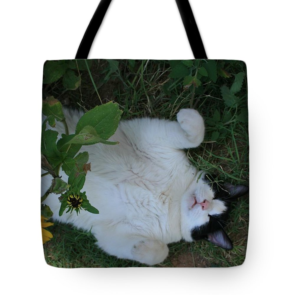 Daisies Tote Bag featuring the photograph Passed Out Under The Daisies by Marna Edwards Flavell