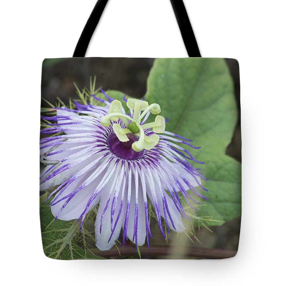 Flower Tote Bag featuring the photograph Passion by Michael Peychich