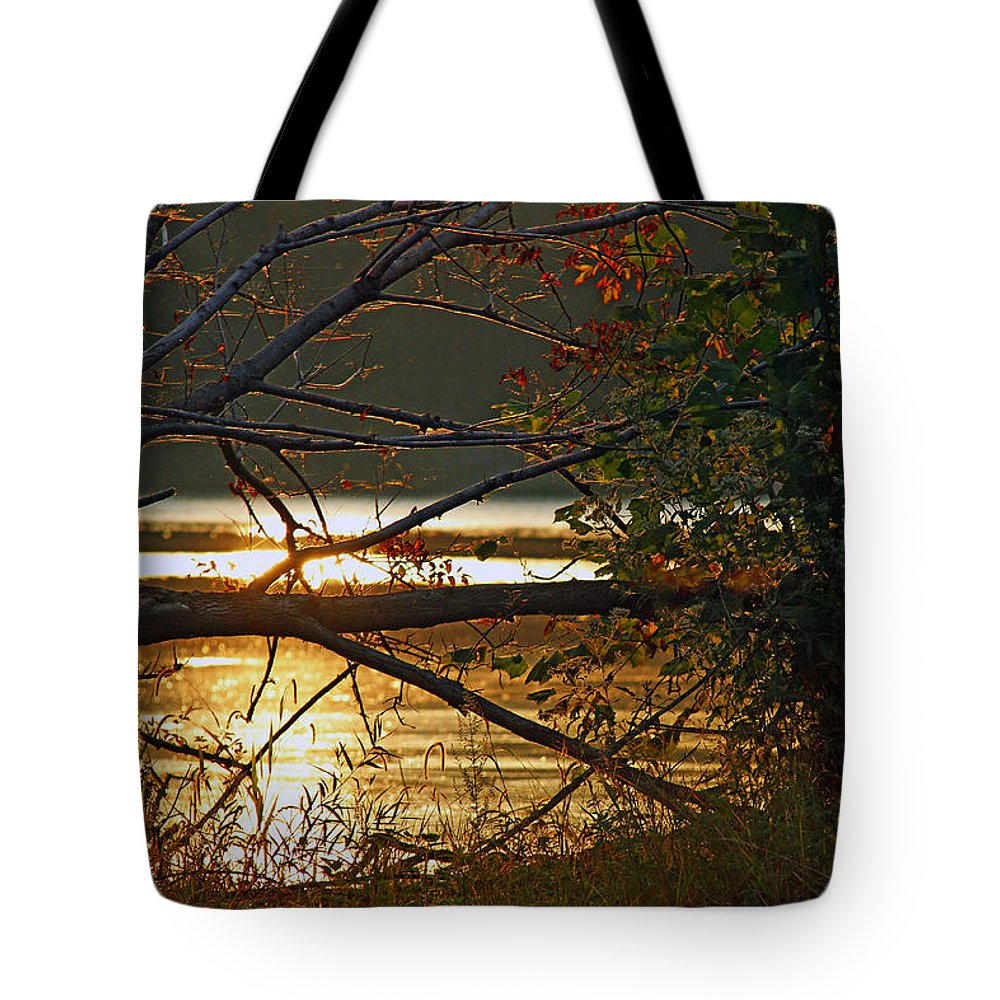 Nature Tote Bag featuring the photograph Past Consciousness by Mitch Cat